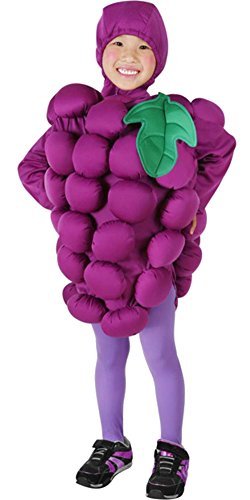 Toddler Grapes Halloween Costume