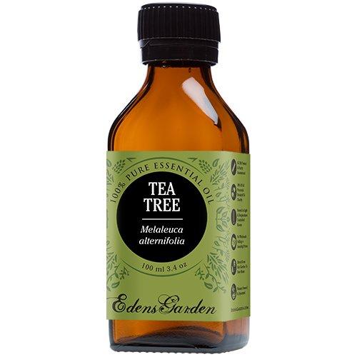 Tea Tree (Melaleuca) 100% Pure Therapeutic Grade Essential Oil by Edens Garden- 100 ml