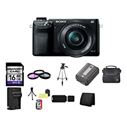 Sony Alpha NEX-6 Mirrorless Digital Camera with 16-50mm Zoom Lens (Black) 16GB Package 5