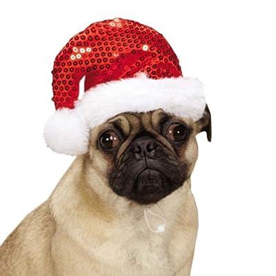 Aria Sequin Dog Santa Hat, Red & White