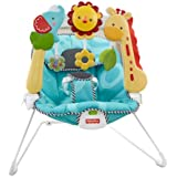 Fisher-Price 2-in-1 Sensory Stages Bouncer (Discontinued by Manufacturer)