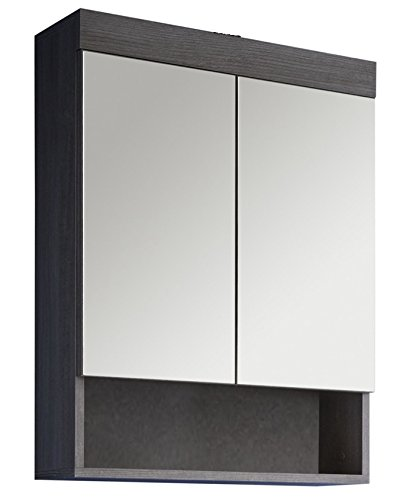 trendteam rn50121 bad spiegelschrank rauchsilber. Black Bedroom Furniture Sets. Home Design Ideas