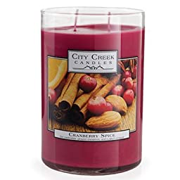 Cranberry Spice 22 oz. Candle by City Creek Candles