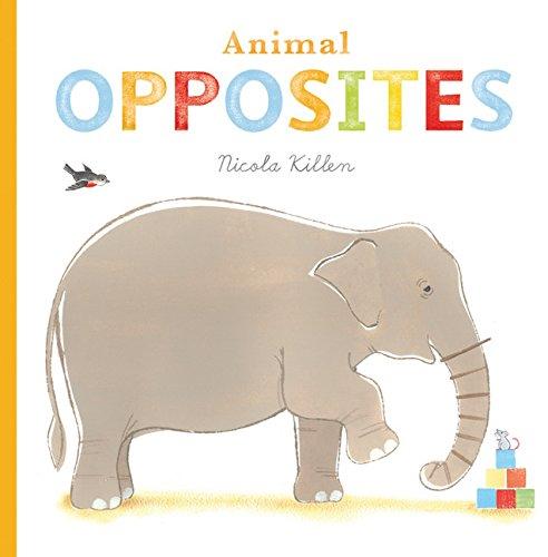 animal-opposites-nicola-killen-animals