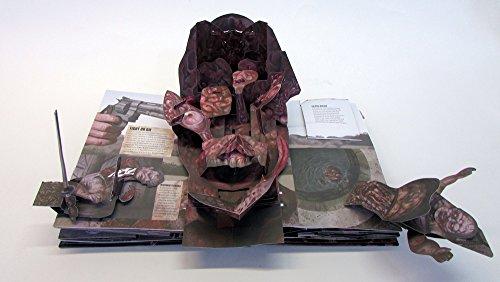 Le livre pop up zombifi de the walking dead la boite verte - Livre de poche walking dead ...