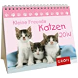 Kleine Freunde - Katzen 2014
