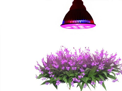 Taotronics® E27 12W Led Grow Light Tt-Gl20 Red Blue Led Lights For Plants In Garden Greenhouse