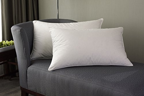 Westin Hotel Feather & Down Pillow - King (Westin Hotel compare prices)