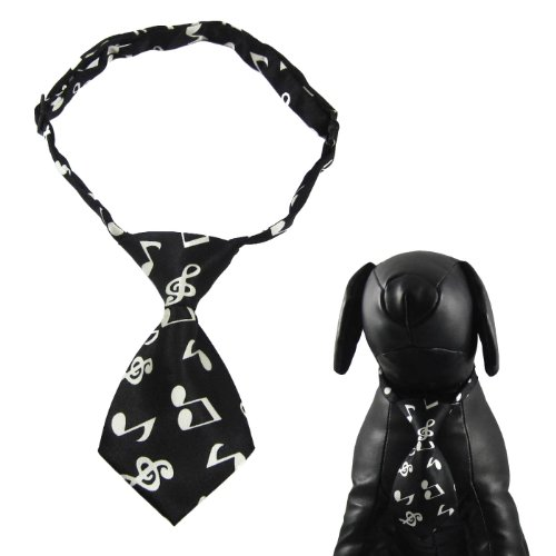 Alfie Couture Designer Pet Accessory - Qun Formal Dog Tie and Adjustable Collar - Color: Black, Size: 10.5