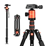 """GEEKOTO 58"""" Ultra Compact and Lightweight Aluminum Tripod with 360° Panorama Ball Head, Camera Tripod for DSLR, Monopod, Tripod for OSMO, Ideal for Vlog, Travel and Work (Color: Aluminum-Traveller, Tamaño: Traveller)"""