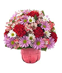 Primrose - eshopclub Same Day Flower Delivery - Online Flower - Anniversary Flowers - Wedding Flowers Bouquets - Birthday Flowers - Send Flowers