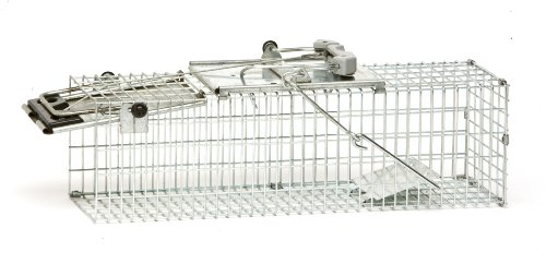 Havahart Easy Set Small 1-Door Animal Trap for Mice, Rats, and Small Squirrels - 1082