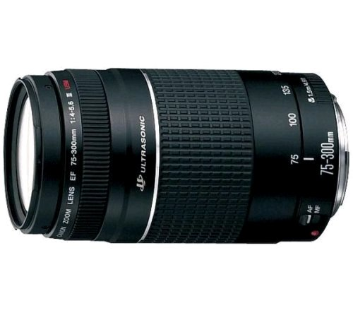 Canon Lens EF 75-300mm f/4-5.6 III USM Telephoto Zoom Lens (6472A012)