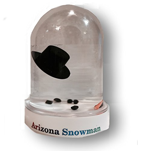 The Original Melted Snowman Snowglobe - Arizona Snow Globe
