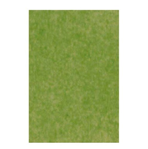 The Gift Wrap Company Solid Color Gift Tissue, 8 Sheet Pack-Moss Green front-717726