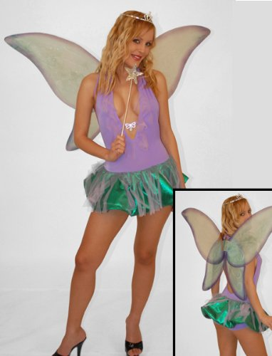 Butterfly Fairy Women's Costume