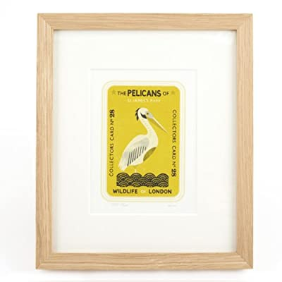 The Pelicans of St James's Park - Tom Frost (Ltd Edition Framed Print)||EVAEX