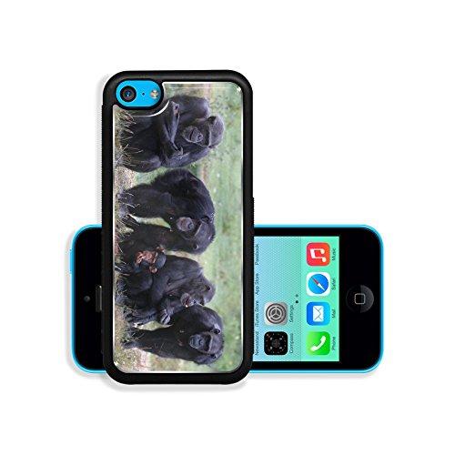 Luxlady Premium Apple iPhone 5C Aluminium Snap Case When Monkey s Go Bad IMAGE ID 221188