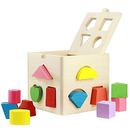 Babrit-13-Holes-Intelligence-Shape-Sorter-Cognitive-and-Matching-Wooden-Geometric-Shape-Sorting-Box