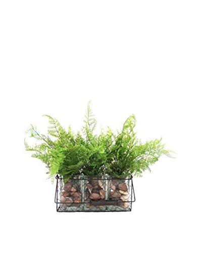 Creative Displays Fern Wired Basket, Green/Brown
