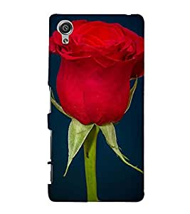 BLOOMING RED ROSE DEPICTING NATURE 3D Hard Polycarbonate Designer Back Case Cover for Sony Xperia X::Sony Xperia X Dual F5122 with dual-SIM card slots