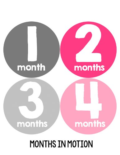 Months in Motion 102 Monthly Baby Stickers Baby Girl Milestone Age Sticker Photo - 1
