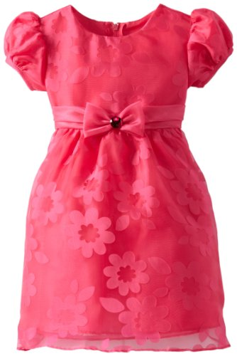 Rare Editions Little Girls' Organza Burnout Dress Toddler, Fuchsia, 3T front-1084931