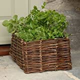 Willow Herb Planter