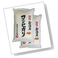 新潟辰巳屋 新潟県産(産地直送米) 白米 コシヒカリ 10kg(5kg×2袋)