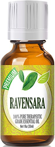 Ravensara Essential Oil (30ml) 100% Pure, Best Therapeutic Grade Essential Oil - 30ml / 1 (oz) Ounces