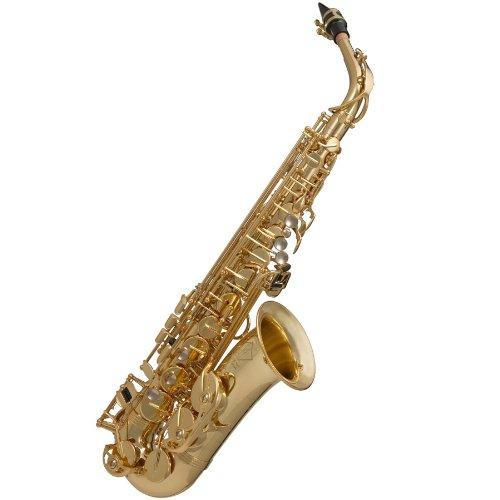 Gemeinhardt Gsa500-Lq Alto Student Saxophone W/ Case