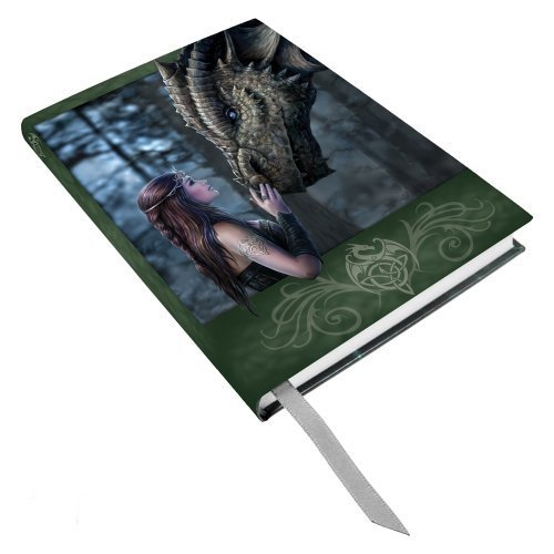 Anne Stokes Once Upon A Time Fairy Dragon Hard Cover Embossed Journal Book by Pacific Giftware