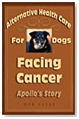 Apollo's Creed - his journey through canine cancer and beyond...