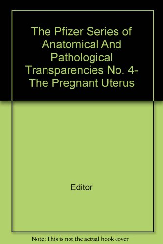 the-pfizer-series-of-anatomical-and-pathological-transparencies-no-4-the-pregnant-uterus