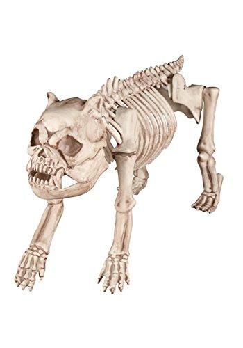 Bones the Hound Skeleton Dog