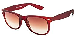 Rafa Wayfarer Sunglasses (Brown) (8223BRNGRDBRN)