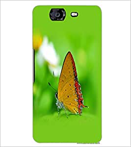 PrintDhaba Butterfly D-1259 Back Case Cover for MICROMAX A350 CANVAS KNIGHT (Multi-Coloured)