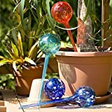 Watering Globes Large - 4pc Deluxe Set