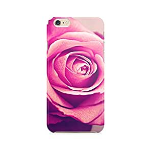 Motivatebox - Apple Iphone 6 plus/6s plus; 6+/6s+ Back Cover - Beatiful Rose Polycarbonate 3D Hard case protective back cover. Premium Quality designer Printed 3D Matte finish hard case back cover.