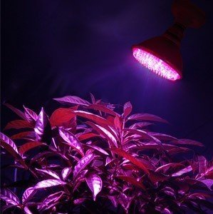 Led Grow Light For Speedup Plant Crop Circle Edition (Nasa Red And Blue)