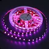 LEDwholesalers 300 SMD5050 Double Density RGB Color Changing LED Flexible Lighting Strip 16.4 Ft (5m/reel),12v, 2055rgb
