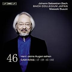 Herr, deine Augen sehen nach dem Glauben, BWV 102: Part I: Arioso: Verachtest du den Reichtum seiner Gnade (Bass)