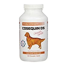 buy Nutramax Cosequin Ds Double Strength Chewables, 250 Count