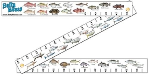 Salty bones fs98 ruler folding fish stick w o rules nolaw for Fish ruler sticker