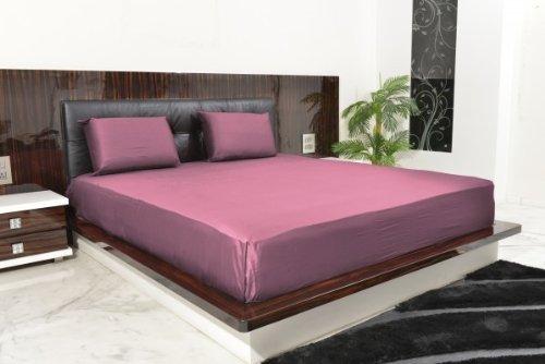 600Tc Egyptian Cotton King Lavender Solid Sheet Set front-943409