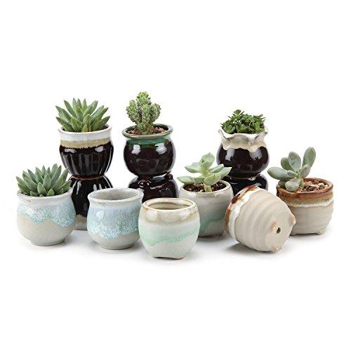 T4U 2.5 Inch Ceramic Flowing glaze Black&White Base Serial Set Sucuulent Plant Pot/Cactus Plant Pot Flower Pot/Container/Planter Package 1 Pack of 12 (Pottery Pot compare prices)