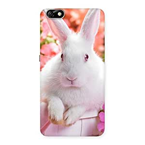 Spring Hare Back Case Cover for Honor 4X