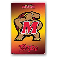 Buy NCAA Maryland Terrapins 22'' x 34'' Logo Poster by Trends International