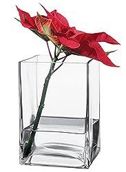Pasabahce Flora Vase (80144)