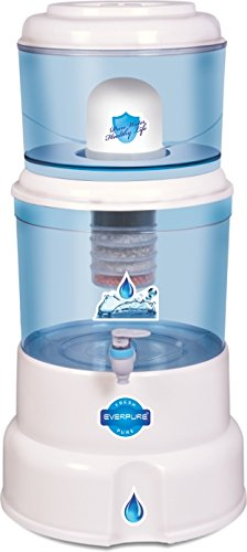 Everpure KR-MP Mineral pot Water Purifier
